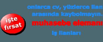 Micro bilen Bayan Muhasebe Elemanı
